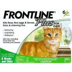 Help offer protection to your pet with Frontline Plus Flea and Tick Manage for Cats and Kittens eight Weeks or Older. Research demonstrates that Frontline for cats kills grownup fleas, flea eggs and flea larvae for up to 6 weeks. When used month-to-month, this medication fully breaks the flea...  #FleaTickControl