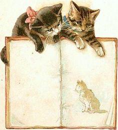 "Illustration for ""Poesje Mies"" - Lentz en de Haan, Utrecht Vintage Ephemera, Vintage Postcards, Images Victoriennes, Photo Chat, Cat Cards, Cat Drawing, Crazy Cats, Cats And Kittens, Cute Cats"