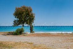 Spiaggia di Mirto-Crosia (CS)