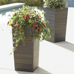 Tidore Planters in Garden & Patio | Crate and Barrel