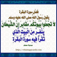 Pin De Azhar Noor Albastaki En فضائل حفظ سورة البقرة