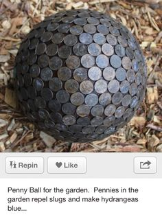 Penny ball for the garden, repels slugs and makes hydrangeas blue