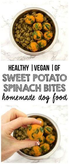 Healthy Homemade Dog Food: Sweet Potato & Spinach Bites! (Vegan, Gluten-Free)