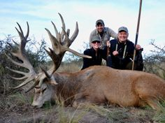 Argentine Red Stag from La Pampa with TGB Outfitters!