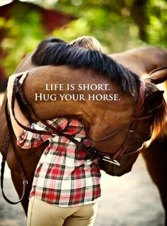 """Life is short. Hug your horse."""