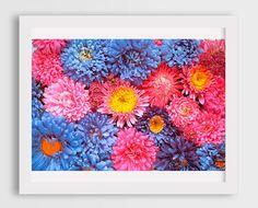 girls room decor, housewarming gift ideas, pink flowers photo prints, floral fine art photography prints, chrysanthemum art photos, pink art