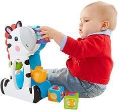 Fisher-Price Roller Blocks Tumblin' Zebra Fisher-Price