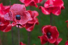 L'Angleterre a rendu hommage aux soldats britanniques et du Commonwealth morts…