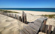 Download Lopen pad naar het strand Hoge kwaliteit behang