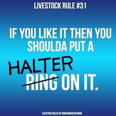 Put a halter on it