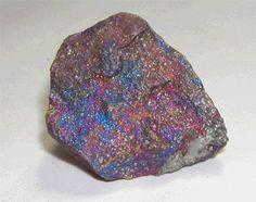 Rock Hound Kids - Rocks, Minerals, Fossils for Kids, Children ...