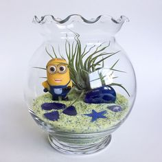 The Minion Series: Blue and Yellow Terrarium Kit by TerrariumKits Terrarium Kits, Air Plant Terrarium, Yellow Crafts, Sand Art, Glass Vessel, Air Plants, One Pic, Minions, Snow Globes