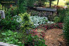 Conrad Art Glass & Gardens: August bloom