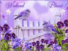 Mosaic Inlay Diamond Painting Full Whole Square Drill Art Birds and Flowering shrubs Diamond Embroidery Purple Animals, Purple Bird, Facebook Timeline Covers, Flowering Shrubs, Favorite Bible Verses, Fb Covers, Happy Weekend, Weekend Gif, Shades Of Purple