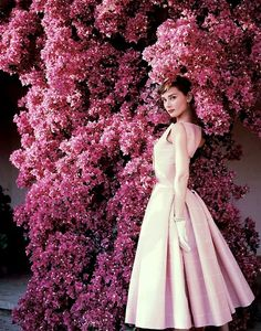 I love audrey because of what she did, not her beauty. She spent a month hidden in a basement by herself in world war two! respect!