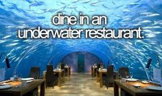 Dine in an Underwater Restaurant / Bucket List Ideas / Before I Die / [7 Most Incredible Underwater Restaurants and Hotels - http://entertainmentdesigner.com/news/restaurant-design-news/7-most-incredible-underwater-restaurants-and-hotels/]