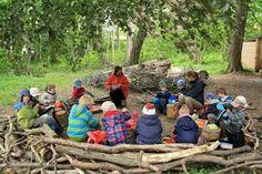 Waldkindergärten - Forest Kindergarten