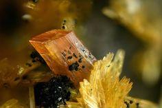 laueite, stewartite - www.facebook.com/geology.page?fref=ts