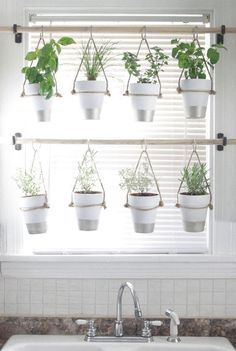 Do you have a blank wall? do you want to decorate it? the best way to that is to create a vertical garden wall inside your home. A vertical garden wall, also called a living wall, is a collection of… Continue Reading → Vertical Garden Design, Vertical Gardens, Vertical Planter, Herb Garden Design, Hanging Herbs, Diy Hanging, Hanging Gardens, Window Hanging, Hanging Flowers