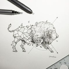 Tattoo •  Drawing • Bison by Kerby Rosanes •