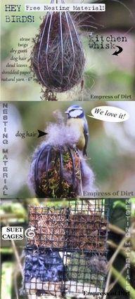 Offer safe nesting materials for birds #backyardbirds #diy #gardenprojects  source img