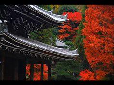 Chionin, Kyoto.