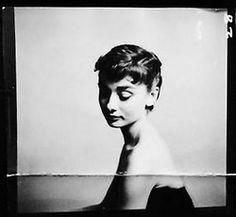 audrey hepburn photographed by richard avedon, new york, december 18, 1953