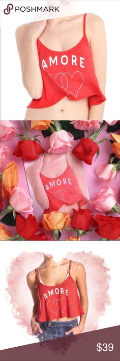 ❤️NWT WILDFOX ❤️AMORE❤️CROP TANK~L❤️ ❤️NWT WILDFOX ❤️AMORE CROP TANK❤️JUST IN TIME FOR VALENTINES DAY!! GET IT FOR YOURSELF OR SOMEONE YOU L❤️VE. NEW IN PACKAGING. RETAIL $69❤️ Wildfox Tops Tank Tops