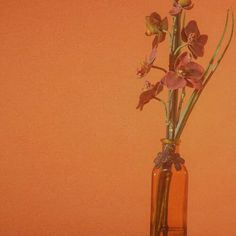 Hey Barbara by IV of Spades © to the rightful owner of the photo Happy Pills, Cover Photos, Glass Vase, Anime Art, Orange, Yellow, Retro, Soul Food, Musicians