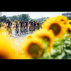 all things cycling | by @keitsuji: Now boarding a flight to Japan. Bye...