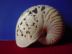 Posts about seashell written by carvingproduct Seashell Art, Seashell Crafts, Carved Eggs, Nautilus Shell, Snail Shell, Bone Carving, Sculpture, Sea Shells, Glass Art