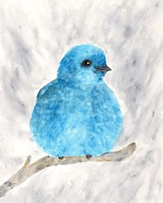 The painting journal of an animal and nature artist. Watercolor Bird, Watercolor Animals, Watercolor Paintings, Original Paintings, Blue Bird Art, Nature Artists, Pastel, Animal Paintings, Bird Paintings