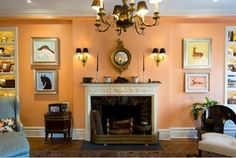 Paint Color Portfolio: Salmon Living Rooms | Apartment Therapy