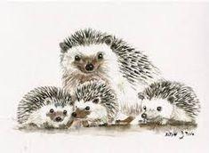 Image result for beautiful hedgehog watercolor art
