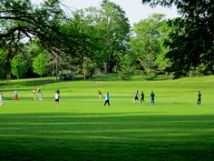 a game of cricket in the park anyone? Cricket, Golf Courses, Backyard, Game, Yard, Venison, Cricket Sport, Backyards, Gaming