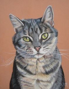 chat pastel sec Art Pastel, Scratchboard Art, Frida Art, Watercolor Cat, Cat Drawing, Pictures To Paint, I Love Cats, Animal Drawings, Pet Portraits