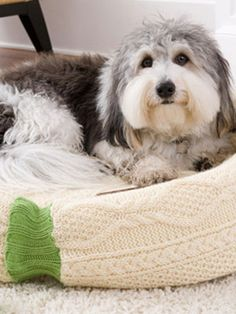 Craft Project: Homemade Dog Bed  Make this cuddly piece of pet furniture using an old cable-knit sweater  By Pamela Acuff      Read more: Homemade Dog Bed at WomansDay.com - Free Dog Crafts - Woman's Day