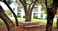 Get an inside look at the beautiful apartment homes and community at Griffis SoCo Austin in Austin, TX. Austin Apartment, Austin Tx, Great Places, Apartments, Bath, Bedroom, Modern, Plants, Beautiful