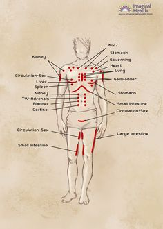 Neurolymphatic points