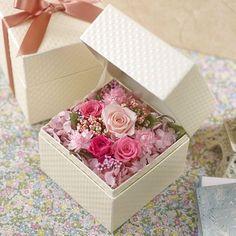 Wish Upon a Star Rose  Pink