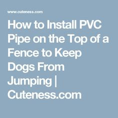 How to Install PVC Pipe on the Top of a Fence to Keep Dogs From Jumping | Cuteness.com