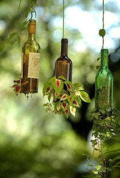 Wine Bottle Planters:   Go to your craft store and buy a bottle cutter, cut the bottom off and fill half full of soil, then place in plants, water and let lay {down} for 5 days or more, the roots will expand and hold in the soil, hang with a wire and water thru the top!