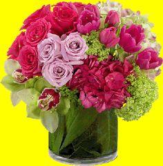 Bouquet de roses #fleurs