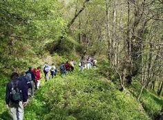 Resultado de imagen para turismo ecologico o ecoturismo