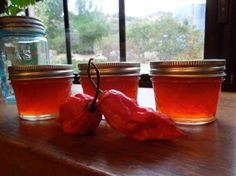 Ghost Pepper Jelly! from Food.com:   CAUTION! You thought my Spicy Habanero Jelly was hot try this!  Make in well ventilated room with gloves.  Naga jolokia is a chili pepper the hottest in the world. Mine were orange when I picked them so I opted for orange bells. If you get red ones do use red bell peppers. If you can't find the ghost chili's just use 12 habaneros