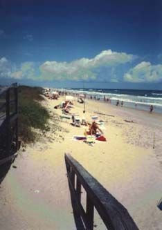 Canaveral National Seashore - Titusville Florida Area - Natural Beach, just Dunes, Sand and the Ocean. They do have Restrooms, and plenty of parking. http://www.nbbd.com/godo/cns/index.html