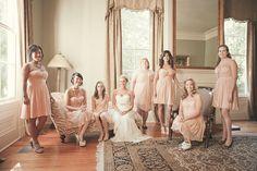 pink Ivy & Aster dresses