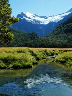Matukituki River in Mount Aspiring National Park, New Zealand (by coollessons2004).