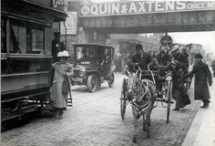 -A zebra in Brixton , a well to do area of London 1912