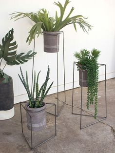 Triangle Modern Planter Stand Set | Modern Furniture • Brickell Collection